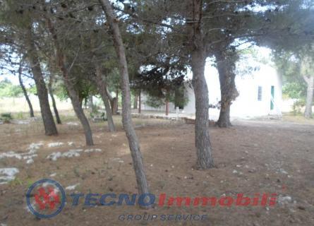 Contrada Marina, 147 Manduria (Taranto)