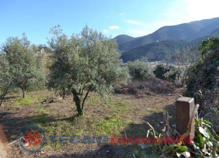 Via alla Certosa, 3 Toirano (Savona)